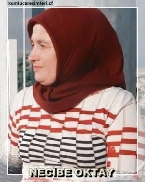 NECİBE OKTAY
