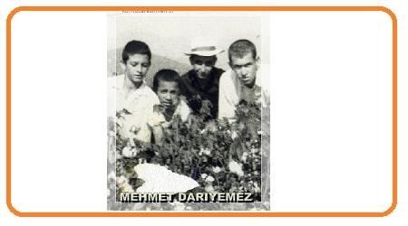Mehmet DARIYEMEZ